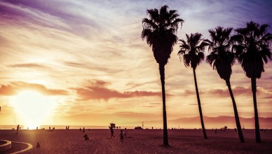 venice-beach-at-santa-monica-top